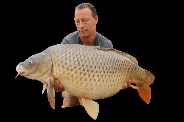 57 lbs river ebro common carp