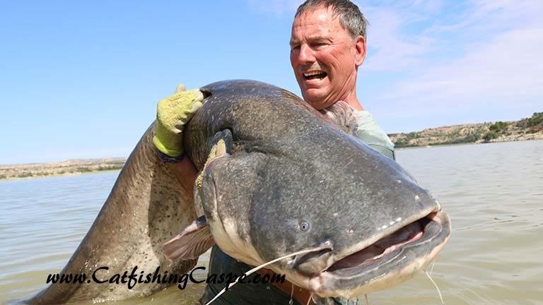 156 lbs River Ebro wels catfish fishing in spain