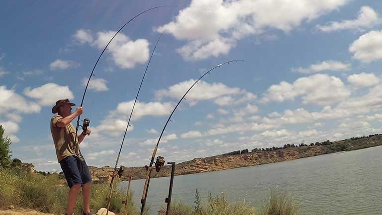 a double take on the river ebro