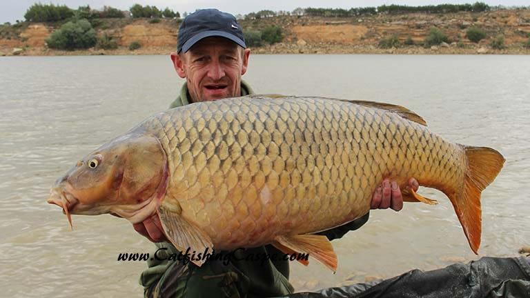 40 lbs common carp with catfishingcaspe